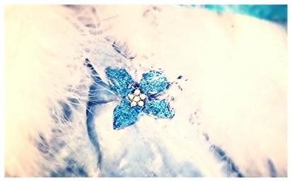 flower snowflake detail