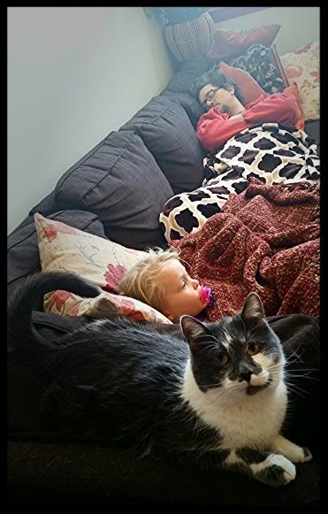 Daddy + ClaraJane + Cat