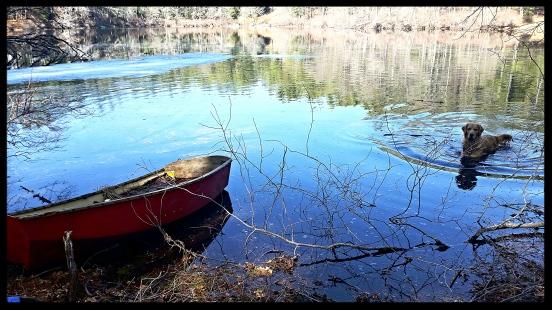 El Rancho Pond