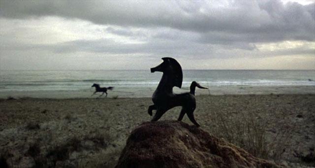black-stallion-besephus