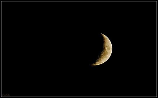 croissant-moon