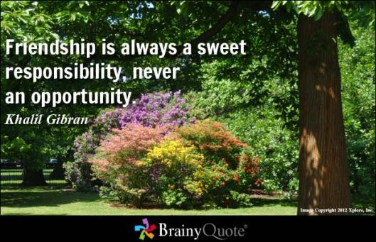 friendship-is-a-sweet-responsibility