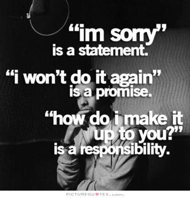 im-sorry-is-a-statement-i-wont-do-it-again-is-a-promise-how-do-i-make-it-up-to-you1-is-a-responsibility1