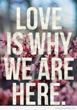 love-is-why-were-here