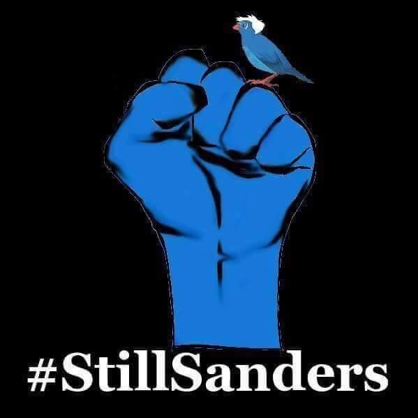 2016-07-29-still-sanders