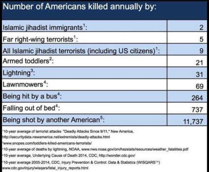 Number of Americans Killed.jpg