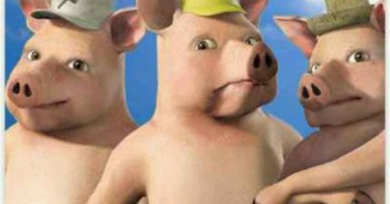 3 pigss