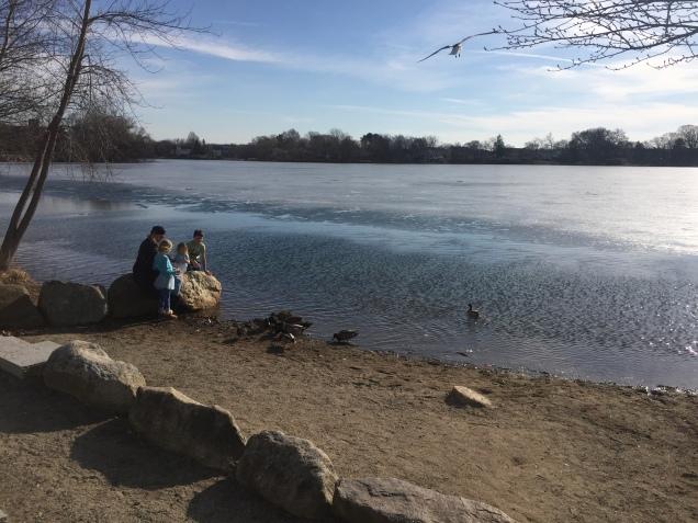 2018-02-20 14.39.15 Rock Pond