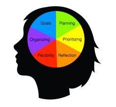 executive-function image