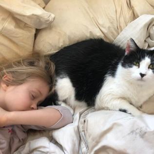 2018-04-23 06.36.21 Sleeping CK