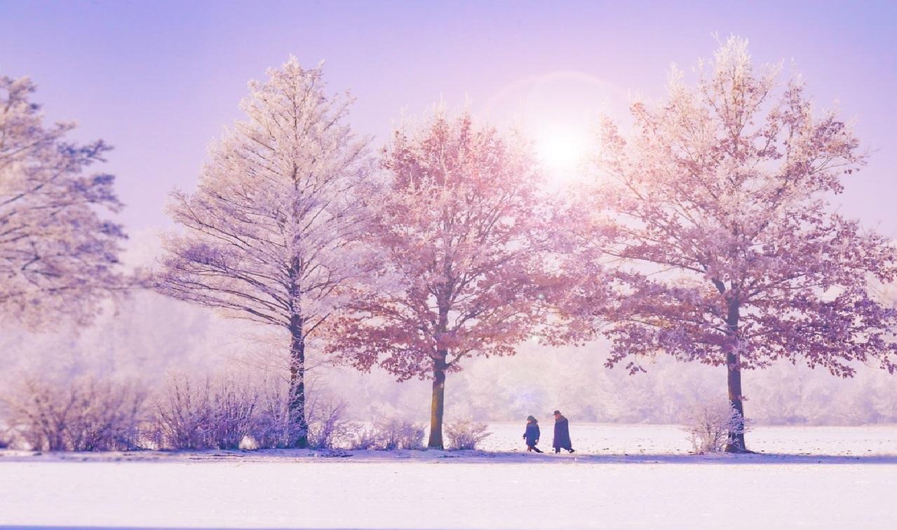 del - walking in a winter wonderland