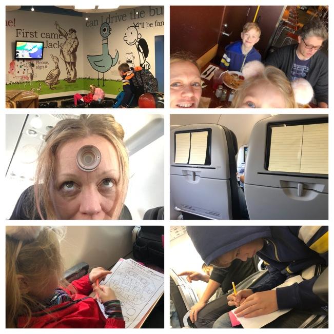 2019-01-25 flight collage