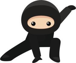 del ninja .jpg